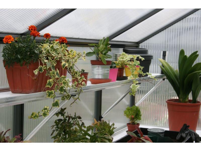 Kgt Hangebord Fur Gewachshaus Rhodo Iv Haus Gartenwelt At